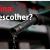 Gasolina: Comum, Aditivada ou Premium?